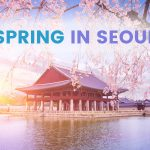 Spring in Korea: 9 Places to Visit in and around Seoul