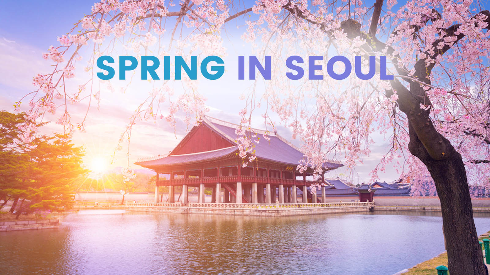Spring In Korea 9 Places To Visit In And Around Seoul Wandergeneration