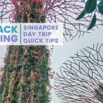 Backpacking Indochina: Singapore for A Day